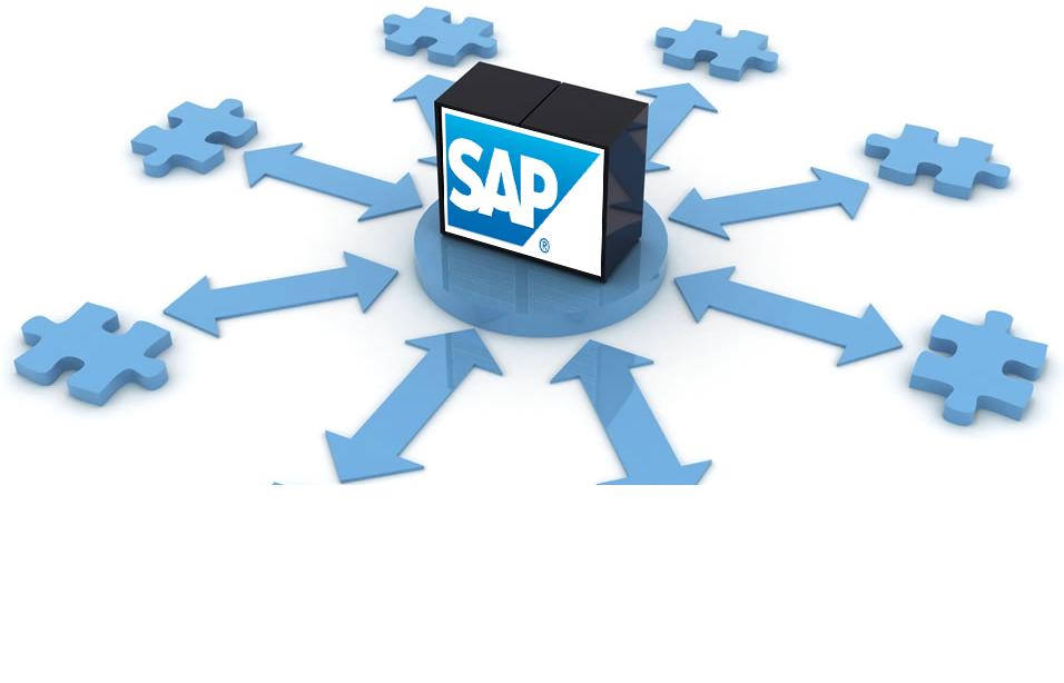 Comment optimiser votre intégration SAP ?